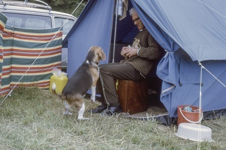 best tents for dog owners