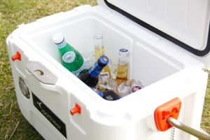 Are Expensive Coolers worth it?
